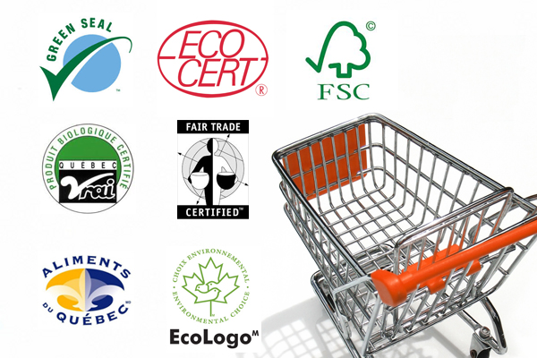 What criteria are involved in choosing greener products?