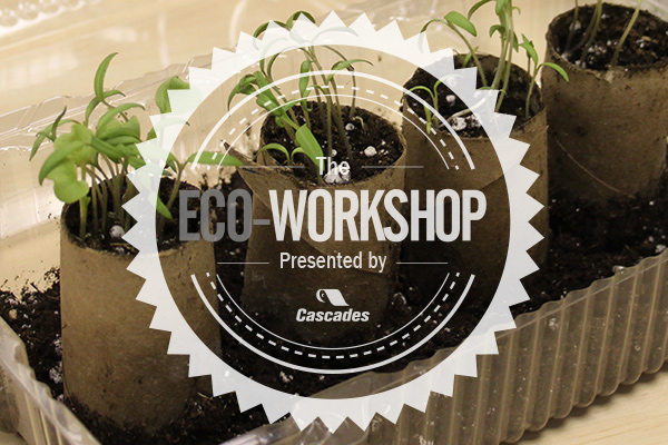 Eco-Workshop No. 1: The Mini Greenhouse