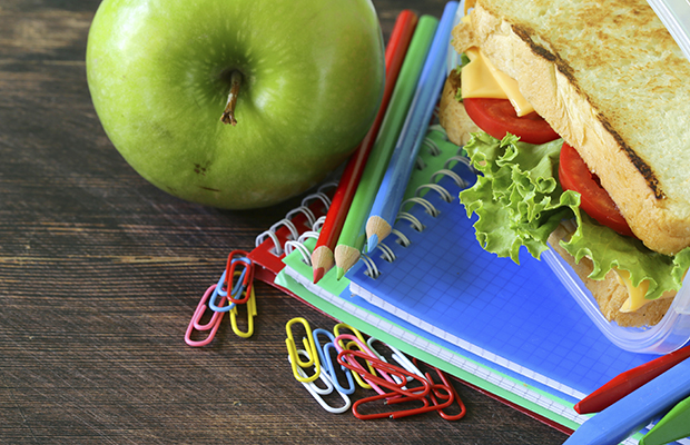 Preparing Litter-less Lunches for going Back to School